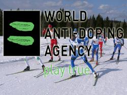 Комиссия WADA может провести антидопинговые расследования в лыжном спорте и биатлоне