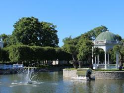 С 15 мая до 15 сентября в парке Кадриорг будет открыта выставка Pond Vita – «Жизнь пруда»