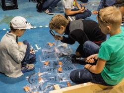 Фестиваль `Открытые игровые пространства` приглашает школьников в музеи Эстонии
