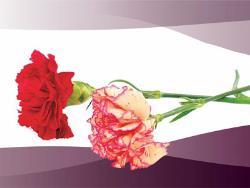 С января 2018 года власти Эстонии планируют вернуть похоронное пособие в размере 250 евро