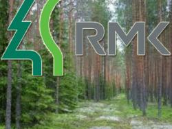 Центр управления лесами Эстонии приглашает жителей страны принять участие в посадке  леса