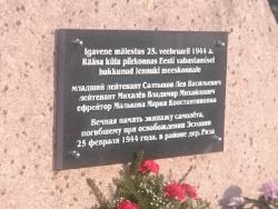 В Кивиыли прошла церемония открытия восстановленного памятника советским лётчикам