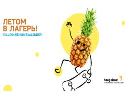 Молодёжный департамент столицы Эстонии выпустил справочник по летнему досугу школьников