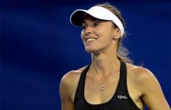 Теннис. Обладательница `Большого шлема`, швейцарка Мартина Хингис завершила карьеру