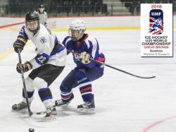 Хоккей. МЧМ-2018. Проиграв аутсайдеру, сборная Эстонии сохранила прописку в дивизоне IIА