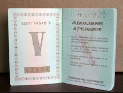 `Окно гражданства` от главы МВД Катри Райк не получило поддержки политиков Эстонии