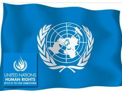 В ООН вновь обратили внимание на ситуацию с правами русского нацменьшинства в Эстонии