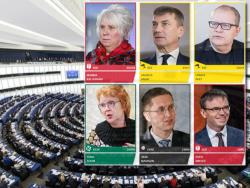 В Эстонии завершились выборы в Европарламент: Яна Тоом вновь в числе евродепутатов