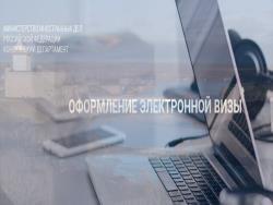 Пограничники Эстонии не будут менять режим работы из-за введения электронных виз в Питер