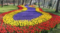 6-дневный авиатур на фестиваль тюльпанов в Стамбуле (22-27.04.2020). От 559 евро.
