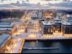 Все на световое шоу: Управа таллинского района предлагает альтернативу новогоднему салюту