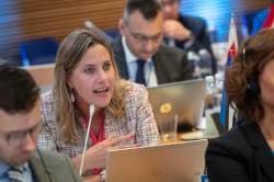 Оудекки Лооне: Парламент Эстонии начал работу над заменой изучения истории заявлениями