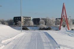 Лыжные трассы в таллинских парках Тондираба и Паэ ждут желающих улучшить своё здоровье