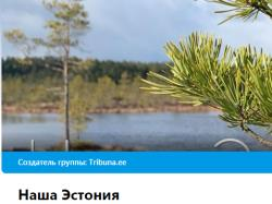 Родион Денисов и Леонид Цингиссер: Наша Эстония общая для всех - без тибл и титлов