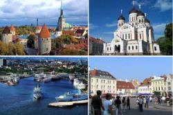 Полку лицензированных таллинских гидов прибыло - теперь их около 200