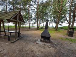 Maaleht: Департамент окружающей среды не разрешил ликвидировать места для отдыха в лесах