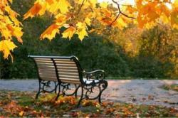 Метеоролиги: В Эстонию вернётся бабье лето, воздух прогреется до 15 градусов тепла