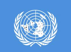 Эксперт ООН: После `языкового` референдума Латвии нужен межобщинный диалог